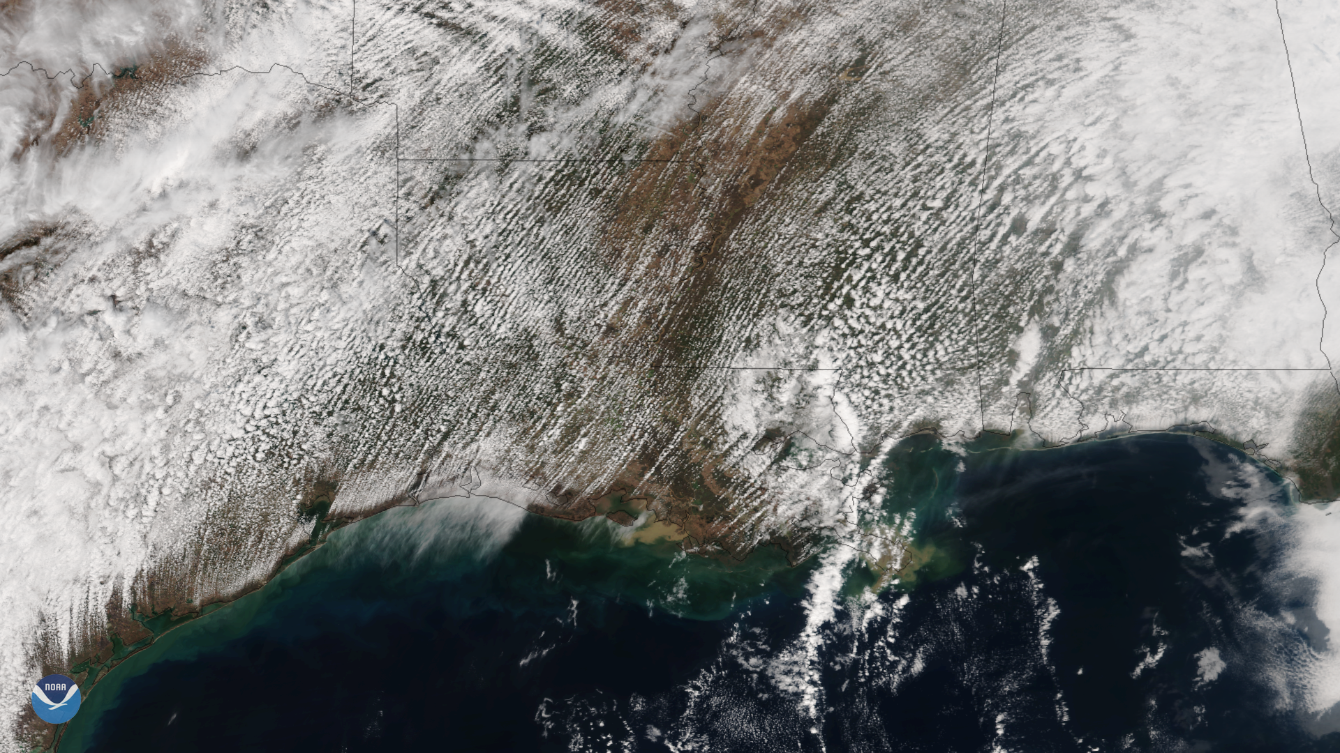 Cumulus Cloud Rows over the South
