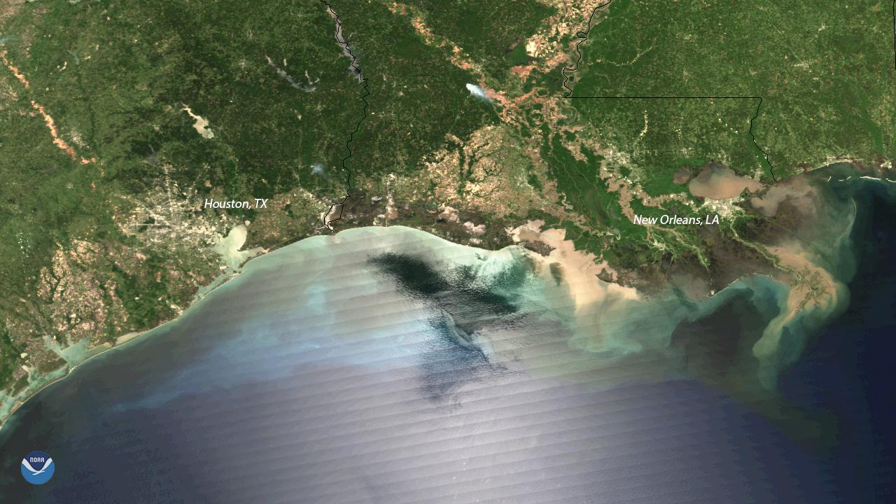 Sediment Flows along the Mississippi River Delta