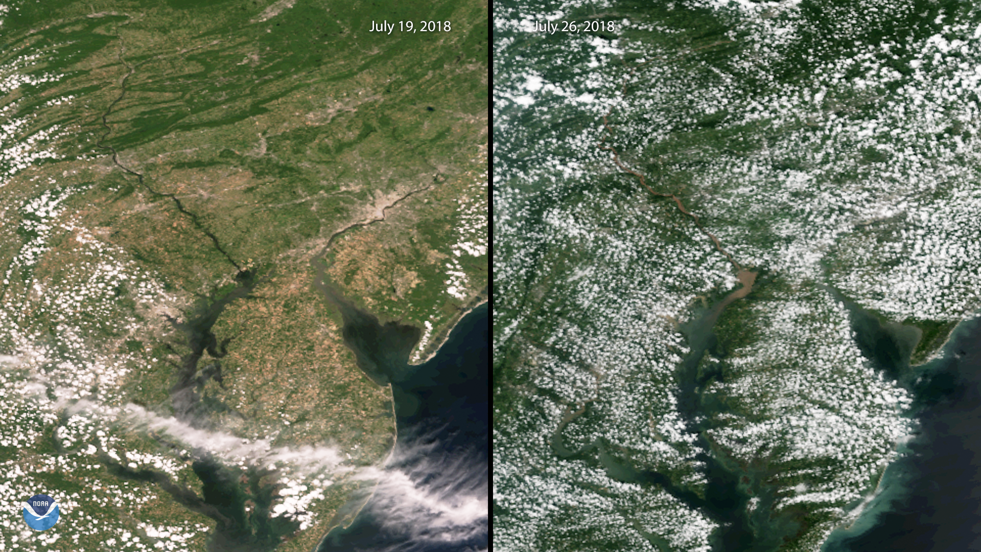 Sediment Plume in the Chesapeake Bay