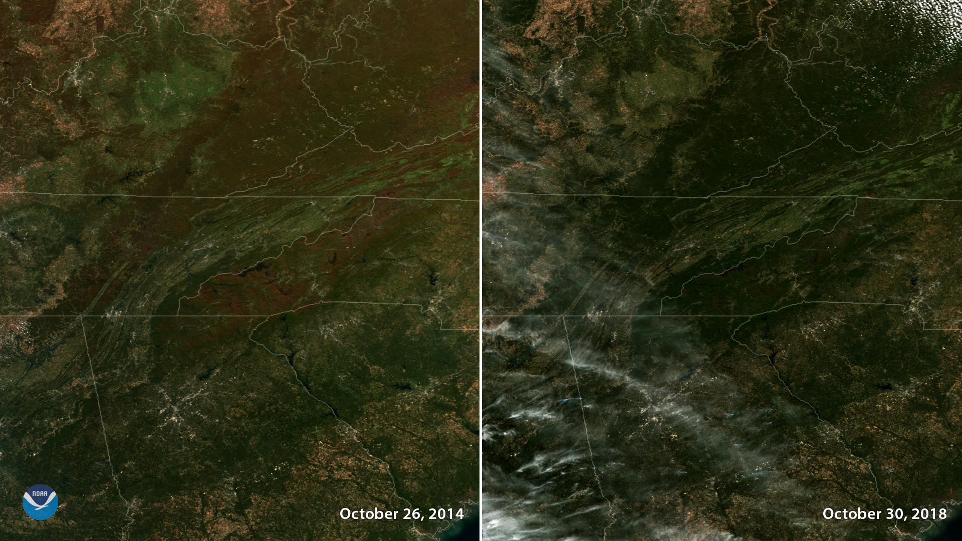 Tracking Fall Foliage from Space